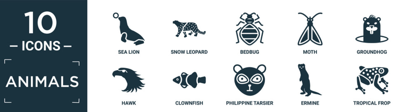 filled animals icon set. contain flat sea lion, snow leopard, bedbug, moth, groundhog, hawk, clownfish, philippine tarsier, ermine, tropical frop icons in editable format..