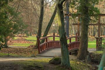 Fototapeta Park dworski w Iłowej. Drewniany mostek w stylu japońskim. nad rzeką Czerna Mała. obraz