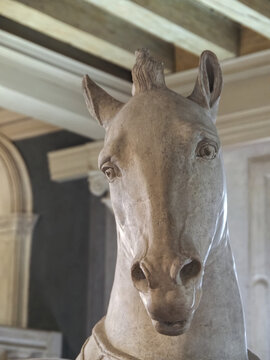 Inside the Art museum Gallerie dell Accademia di Venezia in Venice - sculpture of a horse