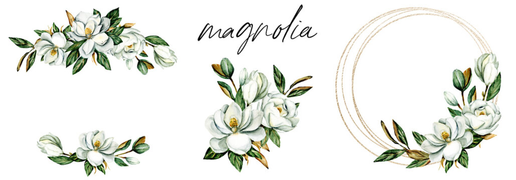 Set watercolor flowers magnolia hand drawn, floral vintage illustrations. Decoration for poster, greeting card, birthday, wedding design. Isolated on white background.