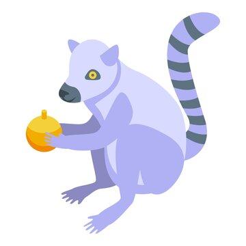 Orange fruit lemur icon. Isometric of orange fruit lemur vector icon for web design isolated on white background
