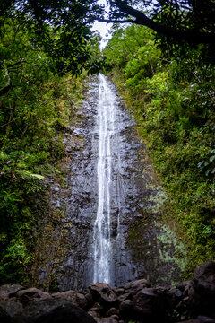 Manoa Falls,Honolulu,Hawaii