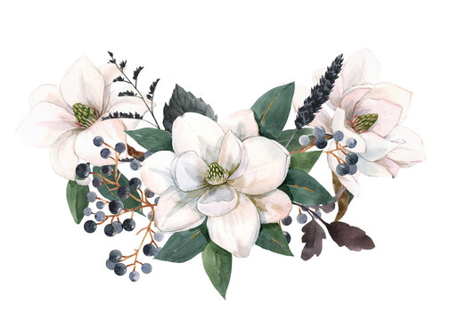 Beautiful stock illustration with gentle hand drawn watercolor floral composition. Magnolia flowers.