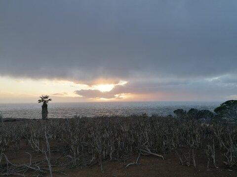 sunset, canary Islands, Costa Adeje.
