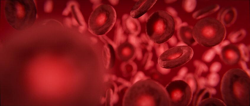 Rote Blutkörperchen 3D Visualisierung