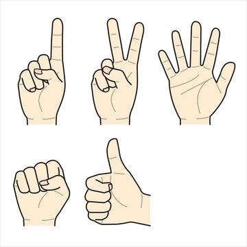 ハンドサイン(グー・チョキ・パー・親指立てる・人差し指立てる)5種類