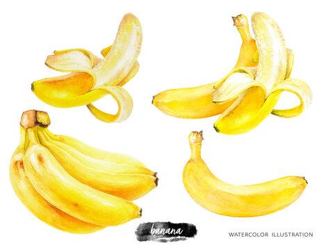 Banana set watercolor illustration isolated on white background