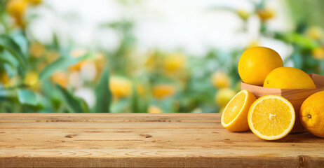 Oranges fruit on wooden table over blurred green tree background