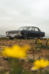 blue vintage car with yellow flowers on the beach