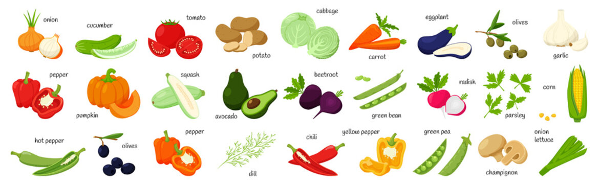 A large set of fresh vegetables, olives, corn, greens. Whole and half. collection of decorative cliparts for food design, recipes, menus, icons.Flat vector illustration, isolated on a white background