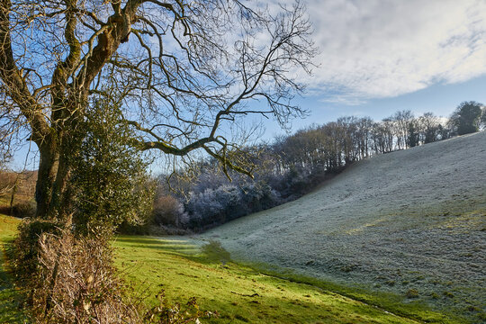 landscape with frost