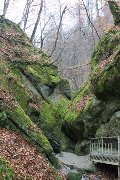 Gorge in the autumn forest. Rocks overgrown with moss and lichen.
