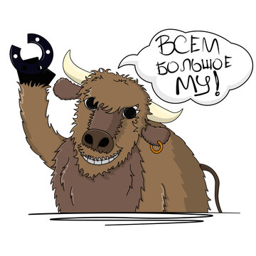 Bull Hello