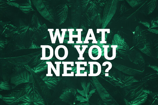 White inscription: what do you need, on a green natural background. Concept for motivating background, business, self-development.