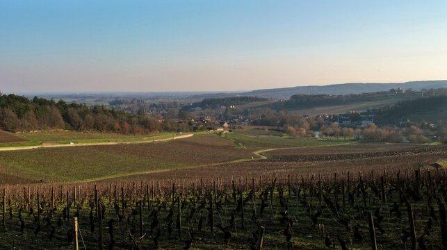 Le village de Mercurey dans la Côte Chalonnaise en Bourgogne.