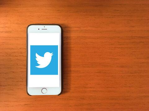 Twitter logo on mobile phone screen