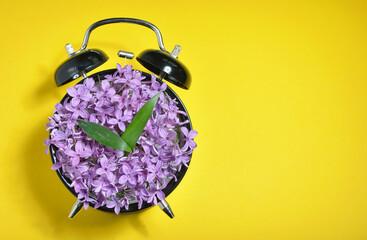 Obraz Purple Flowers On Alarm Clock Over Yellow Background - fototapety do salonu