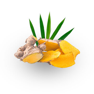 phlai,cassumunar ginger thai herb on a white,isolated