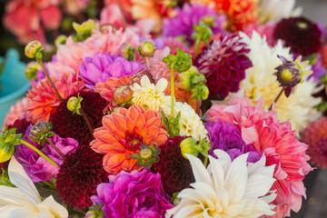 verschillende Dhalia bloemen in 1 groot boeket