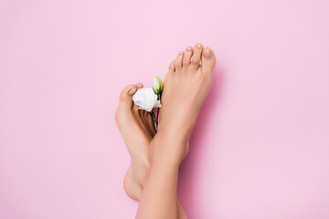 top view of female feet with glossy pedicure near white eustoma flower on pink background