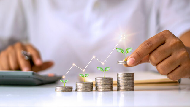 Business investment growth concept, a coin pile with a small tree growing on a coin and a hand holding a coin.