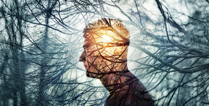 Head of a man on background of trees in forest. Concept on topic of psychology, psychiatry, depression. The branches of trees symbol diseases, and the sun is a symbol of hope and recovery.