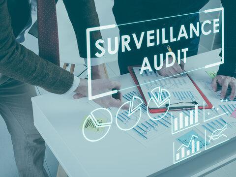 Surveillance audit concept. Auditors working with data.