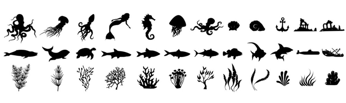 Set of fish on a white background. Large set of underwater items. Creation kit.