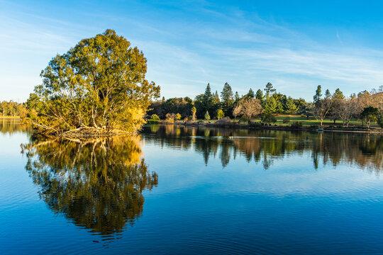 Reflection in Vasona Lake Park Los Gatos, California