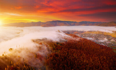 Wall Mural - Epic sunset view in alpine foggy valley.