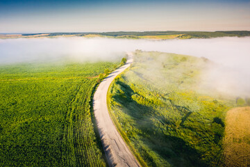 Wall Mural - Aerial top view of rural road passing through agricultural land and cultivated fields.