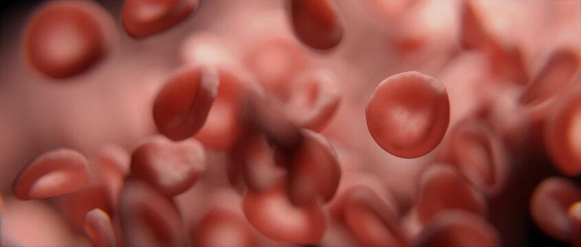 Rote Blutkörperchen oder rote Blutplättchen strömen durch Ader - Konzept Blutkreislauf oder Sauerstoff Transport
