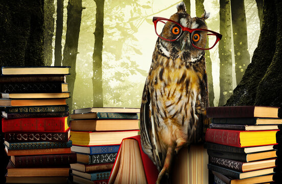 Beautiful wise owl near books in fantasy world