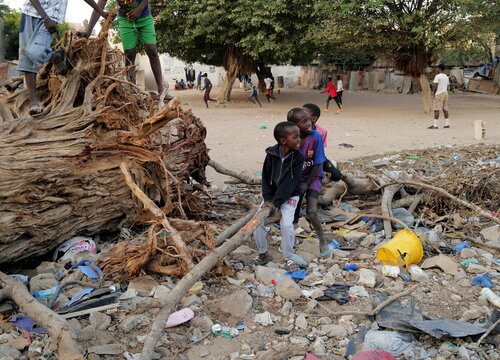 Children play on a tree trunk as the spread of the coronavirus disease (COVID-19) continues, in Ouakam neighbourhood of Dakar