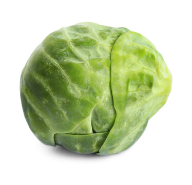 Fresh tasty Brussels sprout isolated on white
