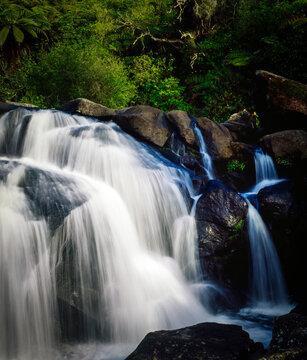 Water flowing over rocks among native foliage at McLaren Falls