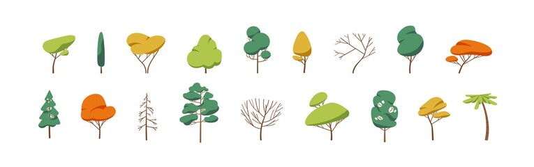 Collection of deciduous and evergreen forest plants isolated on white background. Botanical collection of bare trees and ones with leaves and lush crowns. Flat vector illustration on white background