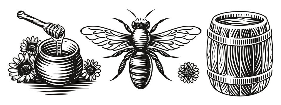 A set of black and white vector illustrations for a honey theme on white background