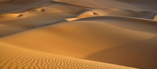 Obraz Sand Dunes In Desert - fototapety do salonu