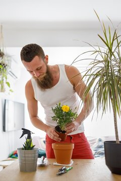 Mid adult man planting flower in pot while standing in living room