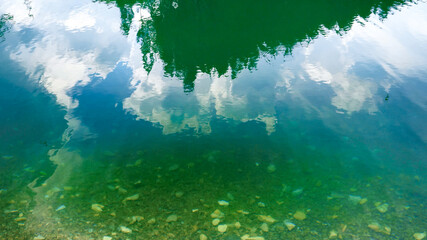 High pine tree forest reflecting in emerald clear water of mountain lake or river