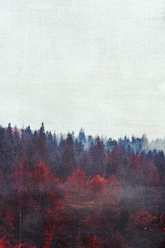 Clear sky over foggy autumn forest