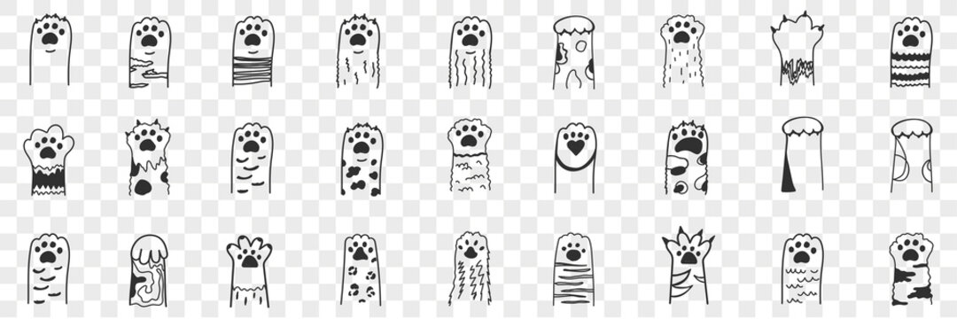Animal paws doodle set. Collection of hand drawn funny cute animal paws with claws with various animal collars and patterns in rows isolated on transparent background. Illustration of paws for kids