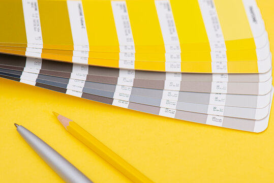 Palette with color of the year 2021 - vibrant yellow and neutral gray, lay out, color template