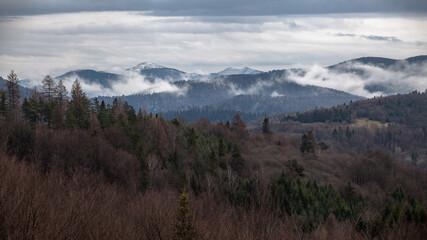 Mglisty górski krajobraz podczas pochmurnego dnia po deszczu, Bieszczady, Polska