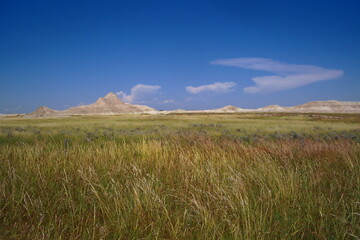 Obraz Scenic View Of Field Against Sky - fototapety do salonu