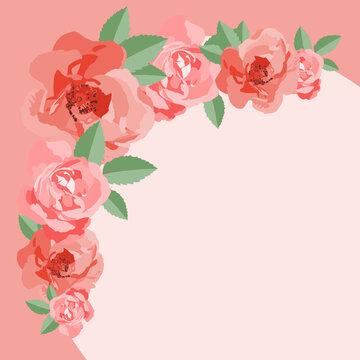Róże - ramka