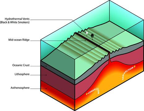 Mid-ocean ridge diagram.