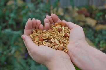 Wall Mural - Homemade granola with almond, walnut, oats in woman hand