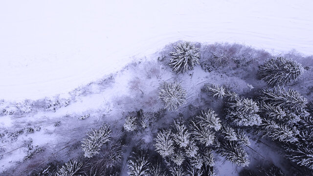Landscape of nature in a snowy forest, aero photo, top view of a forest in winter